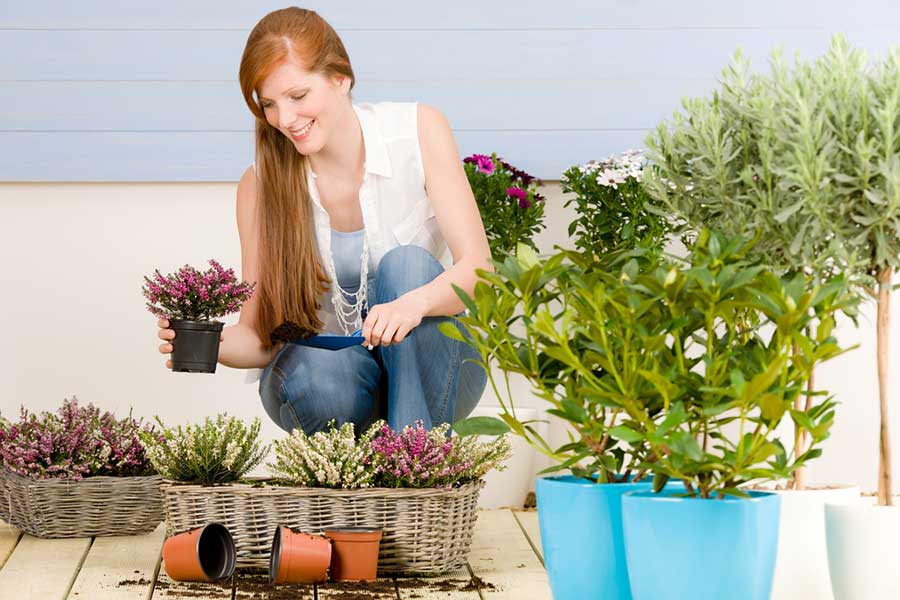 woman with potted plants